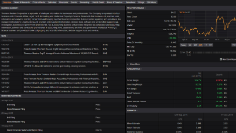 Screenshot of a company overview in Eikon, a wealth management tool.